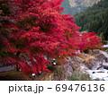 原不動滝公園の紅葉(兵庫県) 69476136
