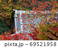 紅葉 京都 永観堂 6 69521958