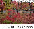 紅葉 京都 永観堂 7 69521959