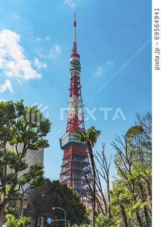 [東京・港区] 銀杏坂のヤシの木の背景に立つ東京タワー 69564941