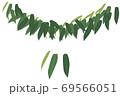 栗の葉 69566051