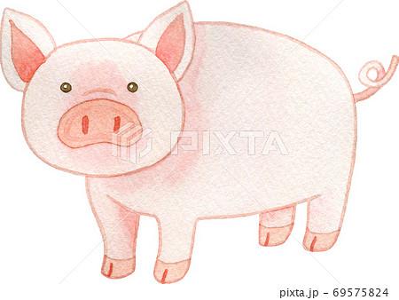 豚(1頭) 69575824