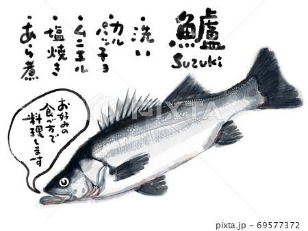 鱸_D手描き_文字有り 69577372