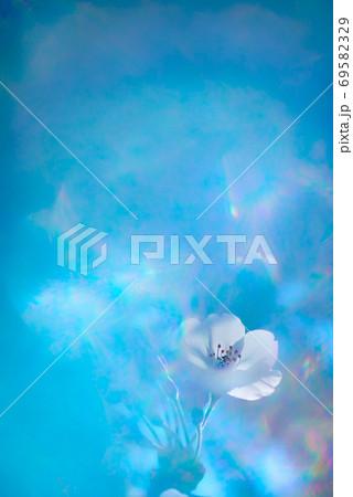 ファンタジーな青い空間に浮かび上がる花 69582329