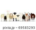 いろいろなヒツジのグループ 69583293