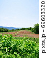 天蓋高原(新潟県) 69603320