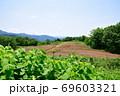 天蓋高原(新潟県) 69603321