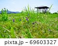 天蓋高原(新潟県) 69603327