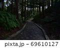 天宮神社境内内、日の差す薄暗い参道と森の木々 69610127