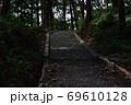 天宮神社境内内、日の差す薄暗い参道と森の木々 69610128