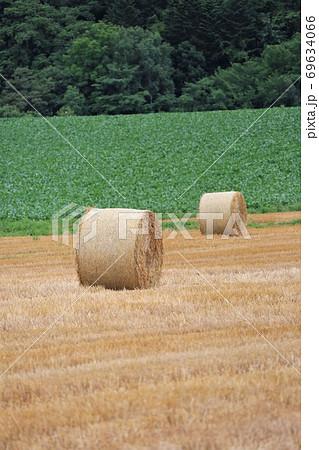 牧草ロールのある風景 69634066
