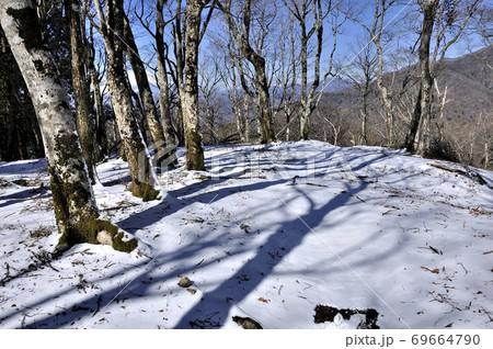 厳冬期の丹沢山地 鉄砲沢ノ頭山頂 69664790