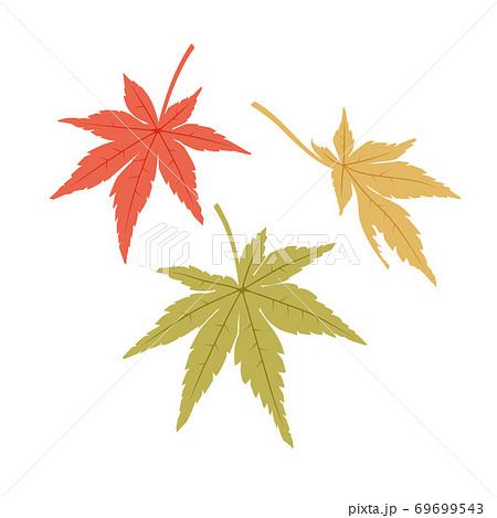 もみじの葉(赤・黄・緑) 69699543