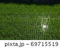 真夏の田園 69715519