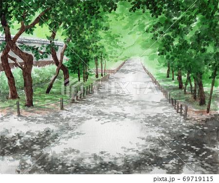 水彩で描いた初夏の梅林 69719115