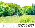 【都立公園】小山内裏公園 水辺の広場 大田切池 テラスからの眺め【色鉛筆】 69722657