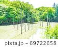 【都立公園】小山内裏公園 水辺の広場 大田切池 テラスからの眺め【色鉛筆】 69722658