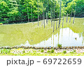 【都立公園】小山内裏公園 水辺の広場 大田切池 テラスからの眺め【色鉛筆】 69722659