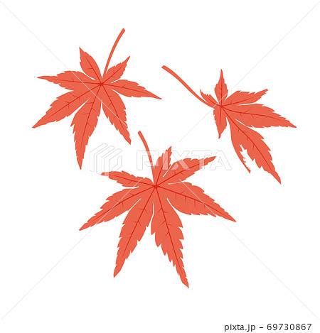 もみじの葉(赤) 69730867