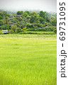 Rural villages of Thailand in the Asian zone and rice fields among the mountains and thick fog in the morning during the rainy season. The concept of people living with nature in perfect harmony. 69731095