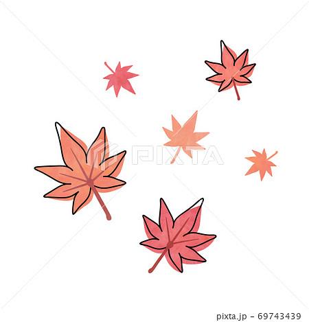 オレンジ色と赤色のモミジの葉 69743439
