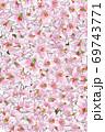 ピンクの百合背景 69743771