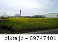 牧歌的な稲刈り前の田んぼの向こうに無機質な高速道路や倉庫、遠くに青と白の煙突のごみ処理場の建物 69747401