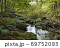 奥入瀬渓流 支流 69752093