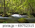 奥入瀬渓流 木漏れ日の渓流 三乱の流れ 69752315