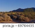 【アメリカ】モハーヴェ砂漠の植生 69764435