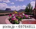 【アメリカ】セドナのレッドロックと鮮やかな花 69764811