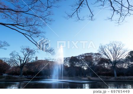 枯れ木々に囲まれながら白い水しぶきを上げる噴水 69765449