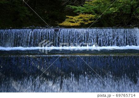 尚仁沢川の取水堰の流れと紅葉の木 69765714