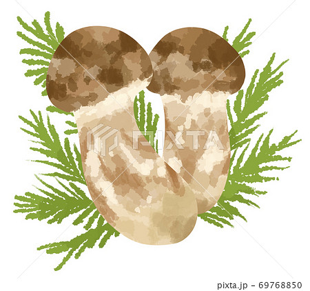 食欲の秋に食べたい高級食材松茸のイラスト 69768850