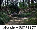 天宮神社境内、森の中のクチナシの池 69779977