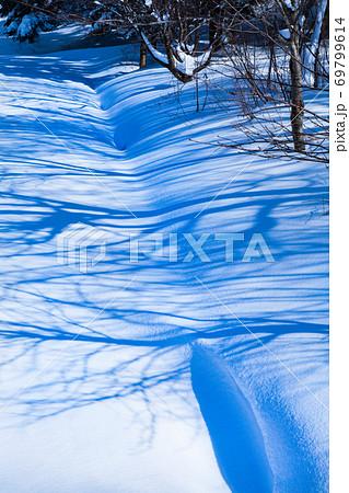 早朝の雪原に樹影がきれいに映っています。広島県 69799614