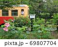 小湊鐵道「芙蓉の花咲く月崎駅」 69807704
