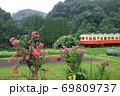 小湊鐵道「百日紅の花とローカル線」山間部背景に 69809737