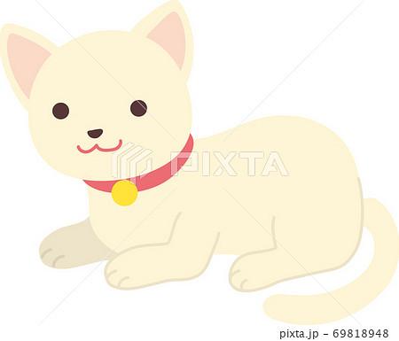 白猫 69818948