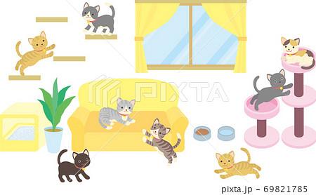 猫のいる部屋 69821785
