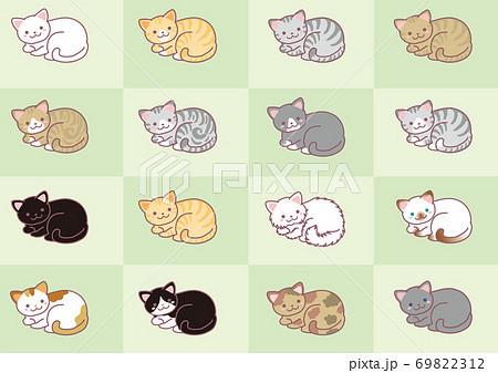 色々な猫 69822312