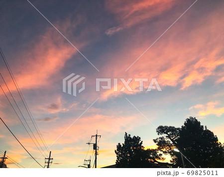 電線と樹木のシルエットと青い空にピンクの雲が広がる夕暮れの風景 69825011