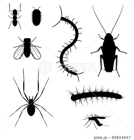 嫌われ虫のシルエット 69834647