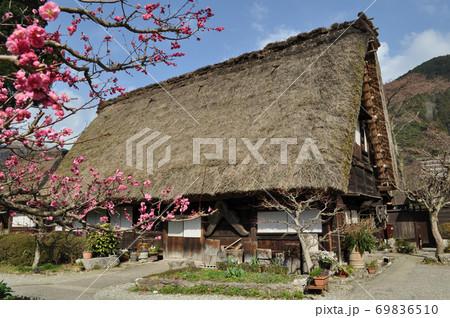 下呂温泉合掌村のわらぶき屋根の古民家 69836510