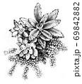 お花のような多肉植物 69842882