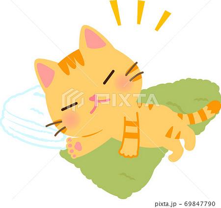 タオルの上で寝るトラ猫 69847790