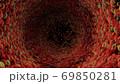 体内 内臓 もこもこ 動く 食道 赤 マゼンダ 体内 細胞  69850281