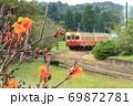 「カンナの花と上総鶴舞駅に入線する列車」を背景に 69872781
