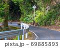 春の緑の回廊でくつろぐヤクシカとヤクザル(4月)世界自然遺産屋久島 69885893