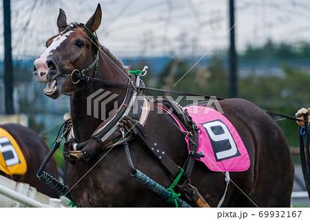 ナイターのばんえい競馬 イメージ 帯広競馬場  69932167